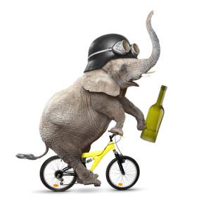 Alkohol am Radl-Steuer